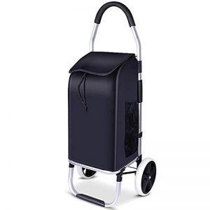 AKINO Chariot de Courses, Pliable sans enlever Le Sac,Poussette de Marché 2 Roues, Cadre en Aluminium & Matériau imperméable(Noir) de la marque AKINO image 0 produit