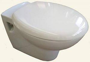 Cuvette suspendue vert egee Porcher 54,5x36 cm + siège de toilette inclus de la marque IDEAL STANDARD FRANCE BAT H image 0 produit