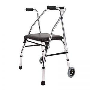 Marche cadre léger pliant 2 roues rollator Walker avec siège rembourré aide à la mobilité limitée de la marque DGEMF image 0 produit