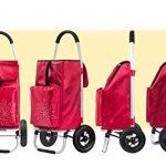 QINNIQ Rabattable Portable Chariot d'escalade Escaliers pour Acheter De La Nourriture Panier Petit Chariot Vieux Chariot Voiture De Bagage À Main Remorque avec Sac À Provisions Imperméables,Redb de la marque QINNIQ image 1 produit